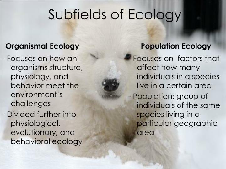 Subfields of Ecology