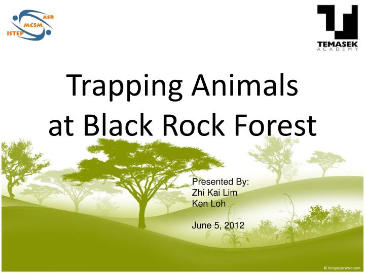 trapping animals at black rock forest n.