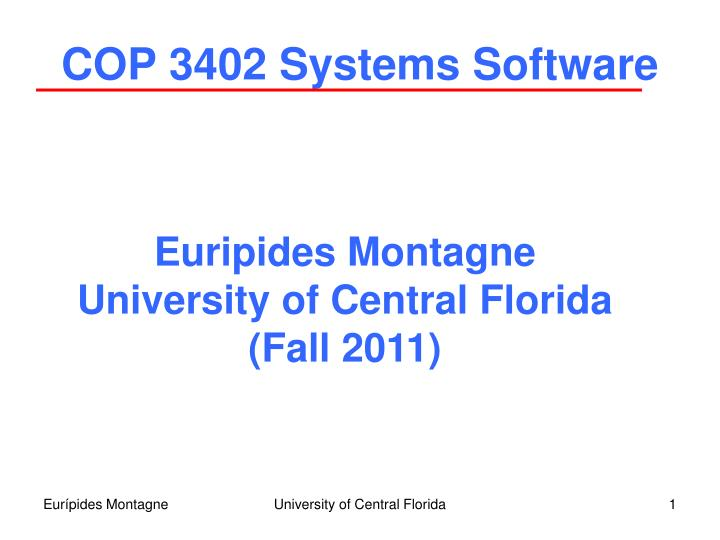 cop 3402 systems software n.