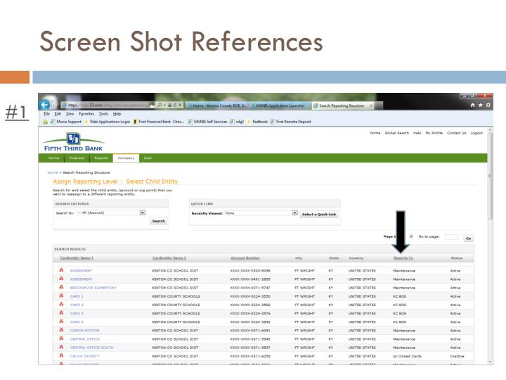 Screen Shot References