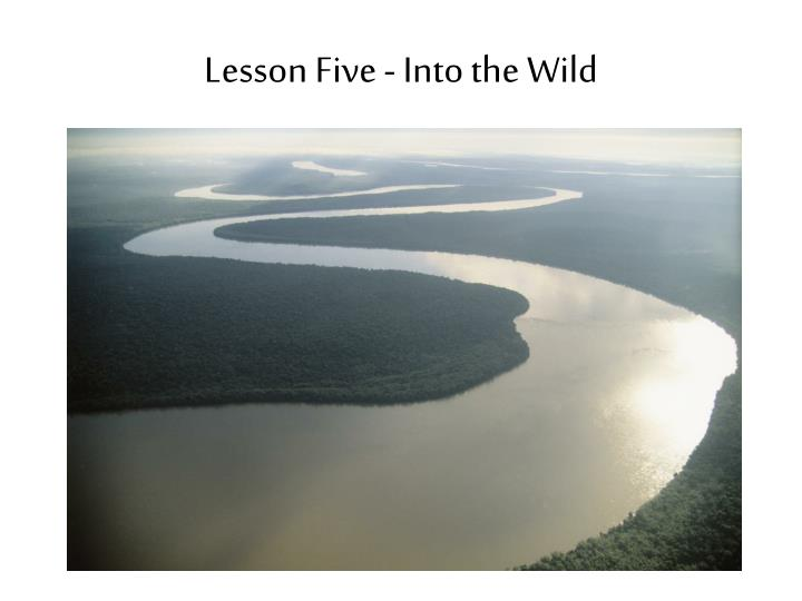 lesson five into the wild n.