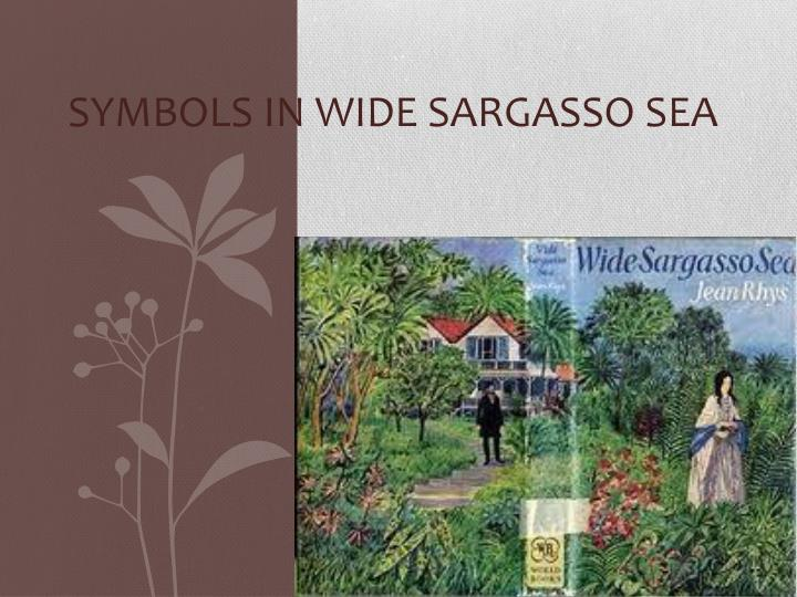 three dreams in wide sargasso sea For other uses, see wide sargasso sea (disambiguation), wide sargasso sea wikivividly antoinette dreams of flames engulfing the house and her freedom from the.