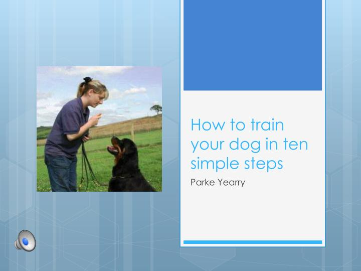 How to train your dog in ten simple steps