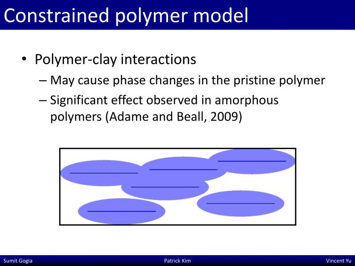 Constrained polymer model