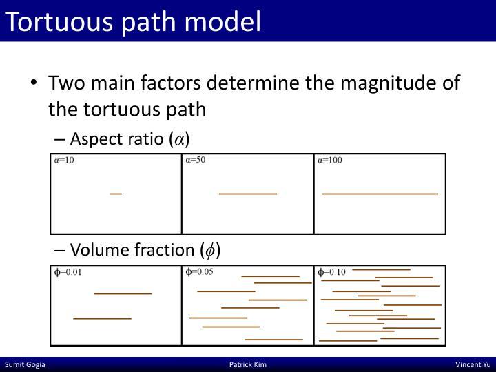 Tortuous path model