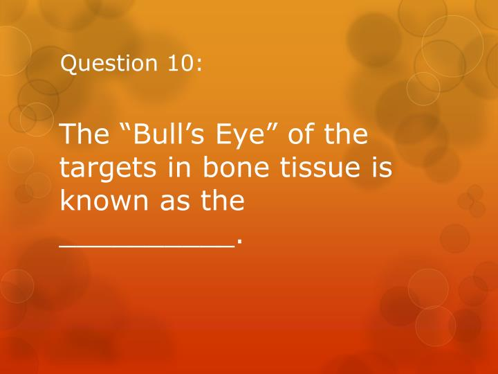 Question 10: