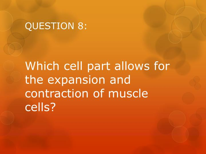 QUESTION 8: