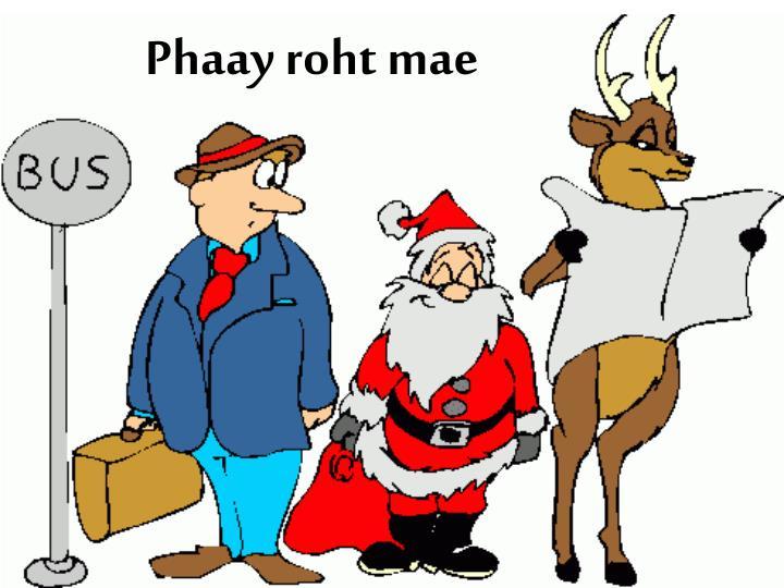 Phaay