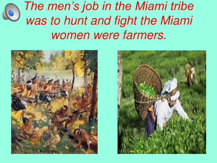 The men's job in the Miami tribe was to hunt and fight the Miami women were farmers.