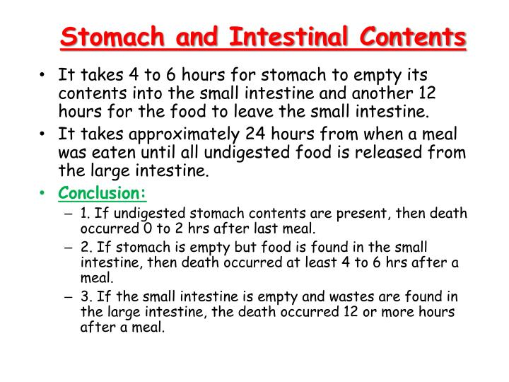 Stomach and intestinal contents