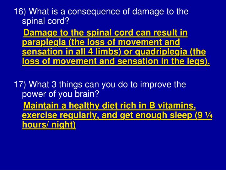 16) What is a consequence of damage to the spinal cord?