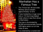 manhattan h as a famous t ree
