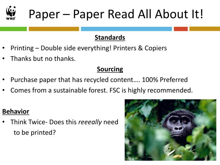 Paper – Paper Read All About It!