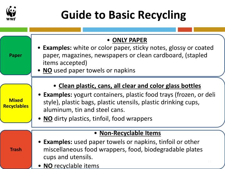 Guide to Basic Recycling