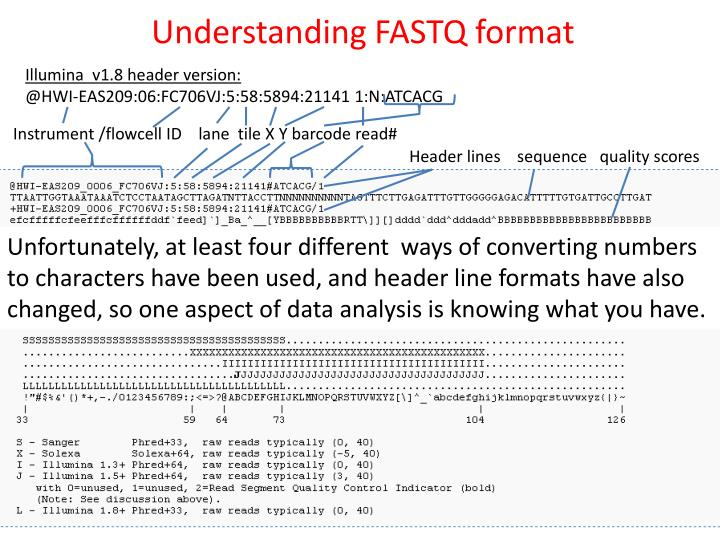 Understanding FASTQ