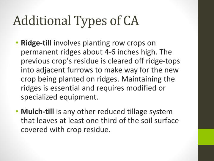 Additional Types of CA