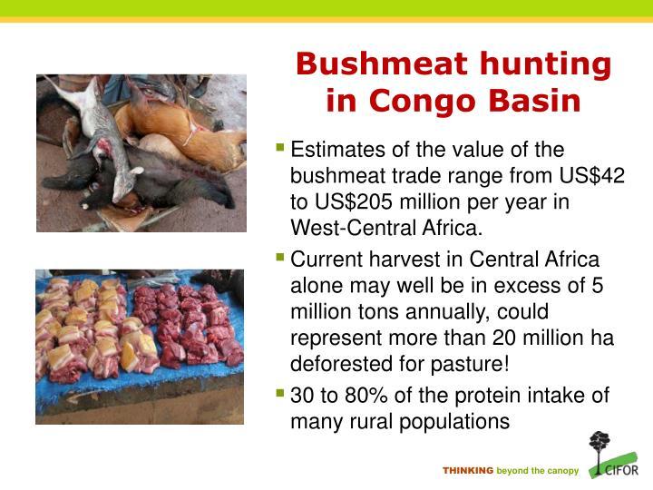 Bushmeat hunting in Congo Basin