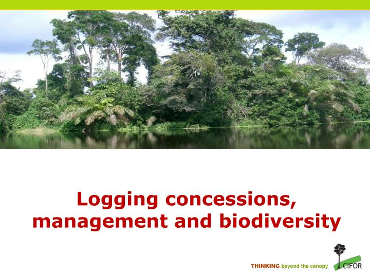 Logging concessions management and biodiversity