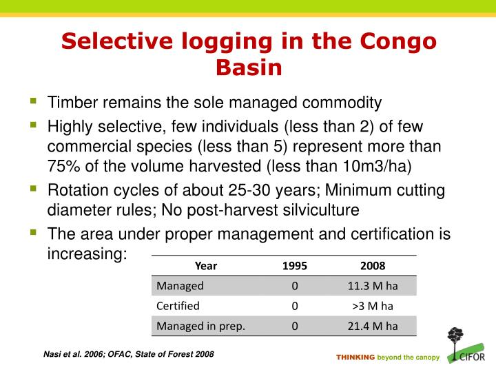 Selective logging in the Congo Basin