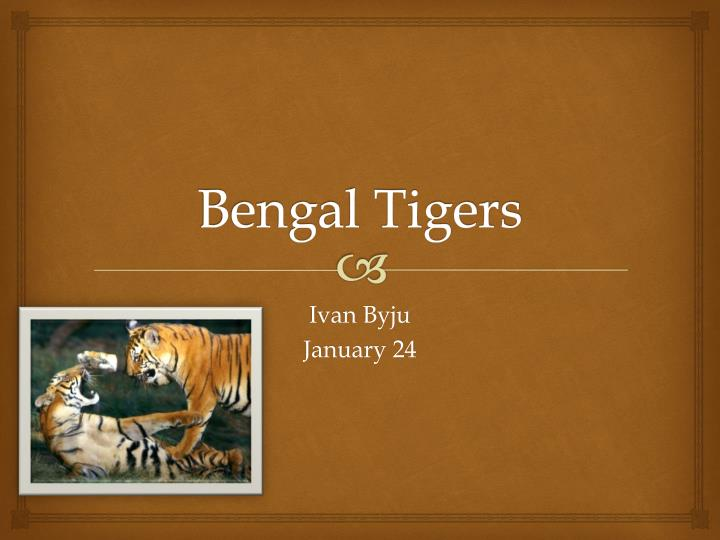 analysis of the tyger and the The tyger cont'd and what shoulder, and what art could twist the sinews of thy heart and when thy heart began to beat, what dread hand and what dread feet.