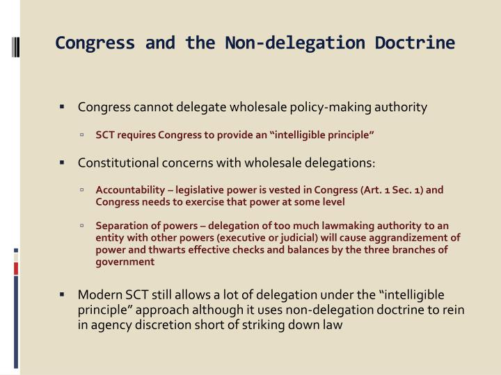 congress and the non delegation doctrine n.