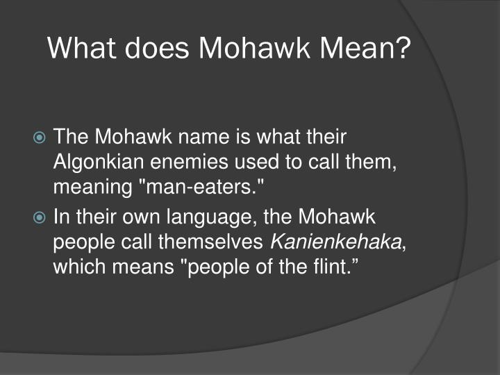 Ppt mohawk indian tribe by dylan skelton powerpoint for What does diction mean