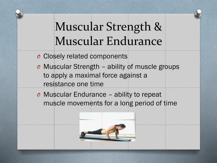 Muscular Strength &
