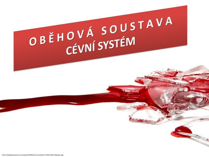 download Sulla questione ebraica 2007
