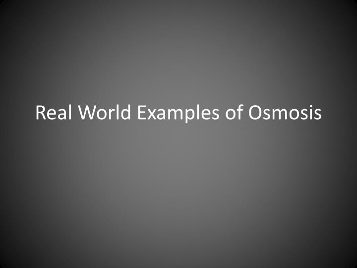 real world examples of osmosis n.