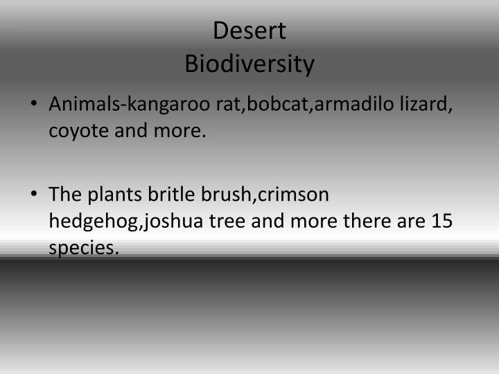 Desert biodiversity