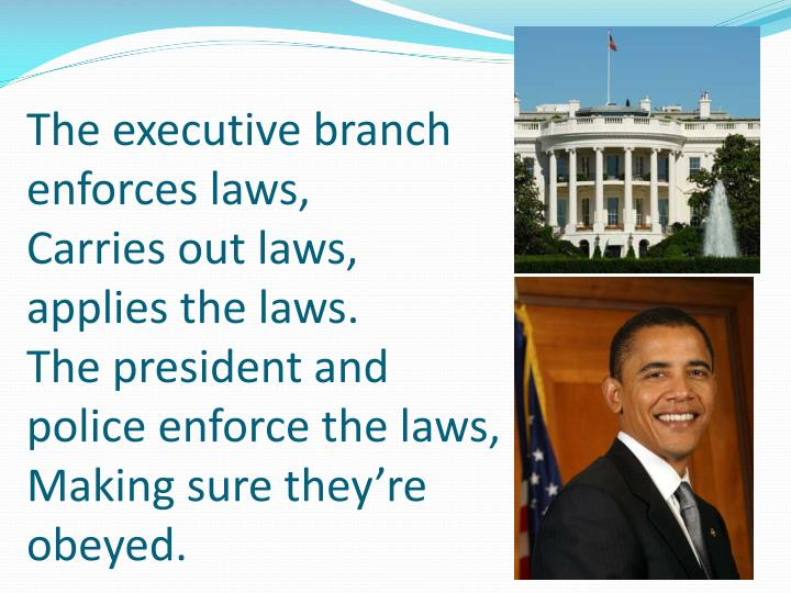 The executive branch enforces laws,