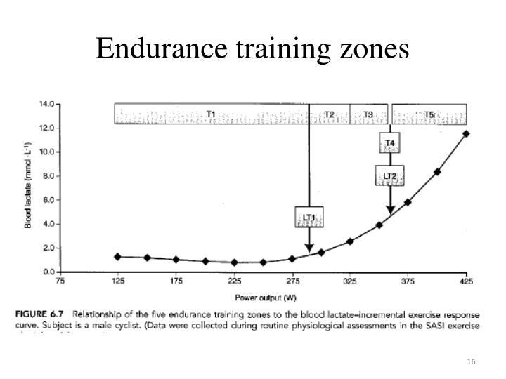 Endurance training zones