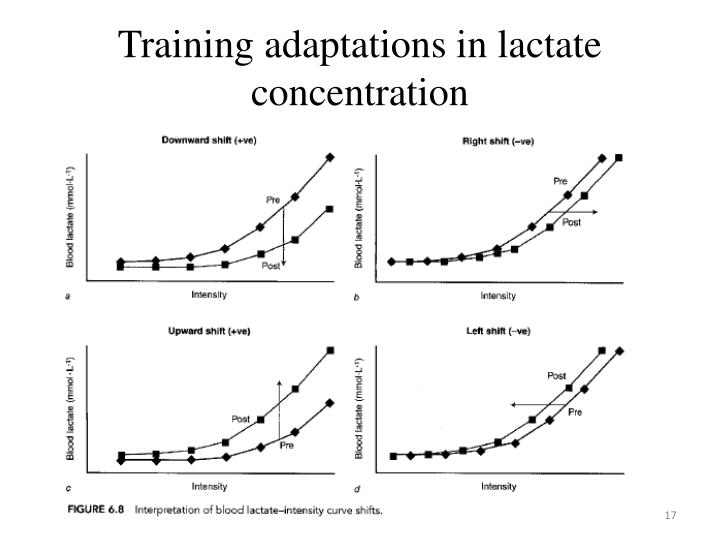 Training adaptations in lactate concentration