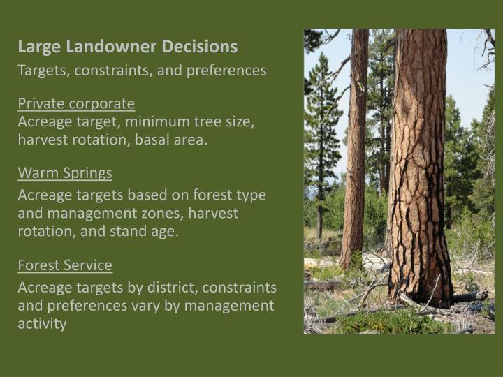 Large Landowner Decisions