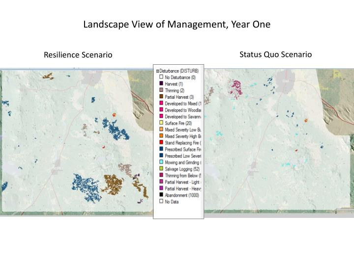 Landscape View of Management, Year One