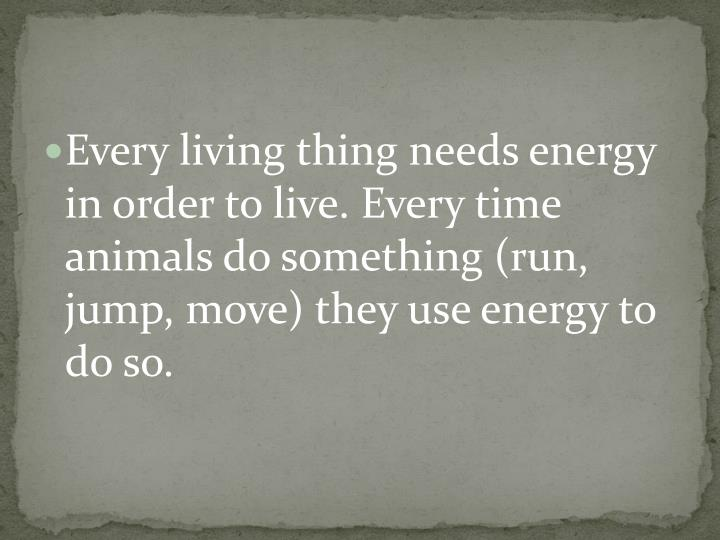 Every living thing needs energy in order to live.