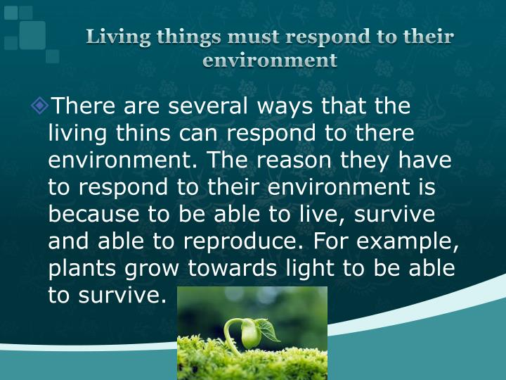 seven ways the animals survive and respond to their environment essay For animals the purpose of adapting is to be able to survive in the environment that they live in all living things have to make adaptations to survive in their if the environment changes and you can't adapt you can't survive adaptation can work in two ways the best example of this is camouflage.