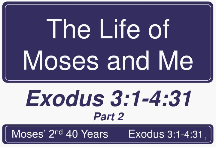 the life of moses and me n.