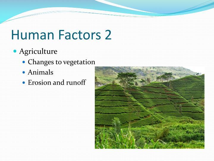 Human Factors 2