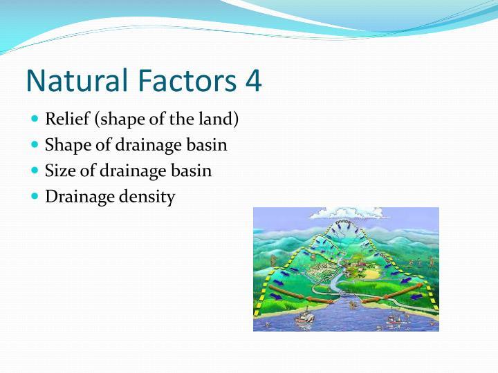 Natural Factors 4