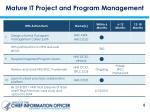 mature it project and program management