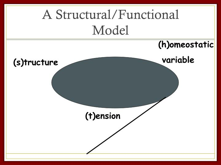 A Structural/Functional Model