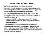 conclusion next steps