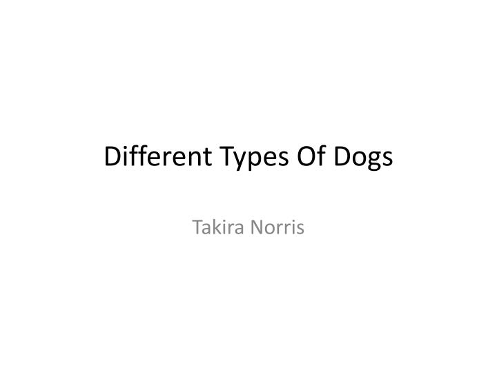 different types of dogs n.