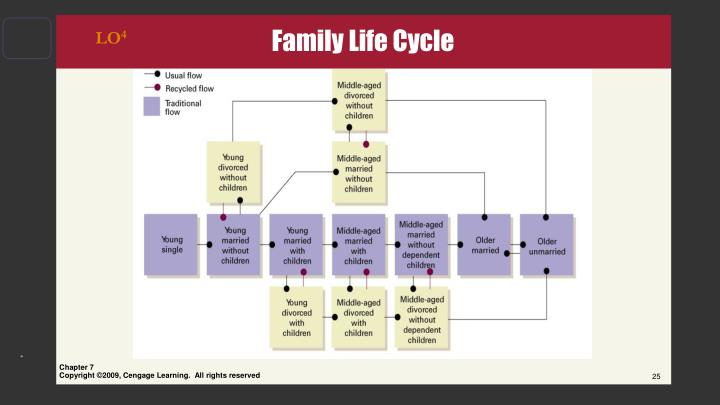 Family Life Cycle