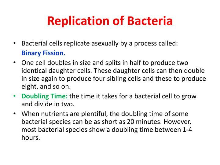 Replication of Bacteria