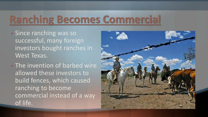 Ranching Becomes Commercial