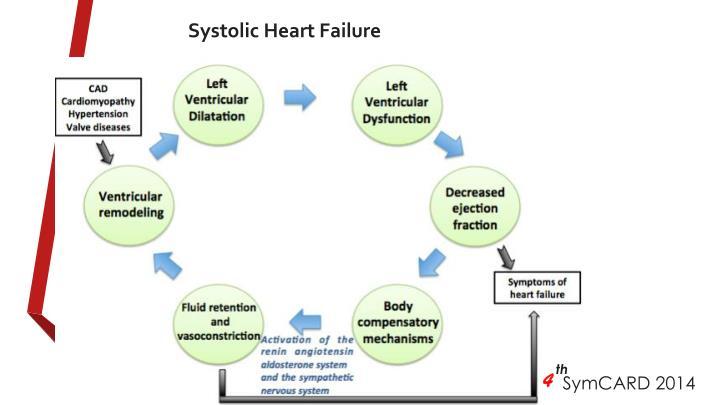 Systolic Heart Failure