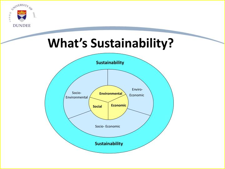 What's Sustainability?