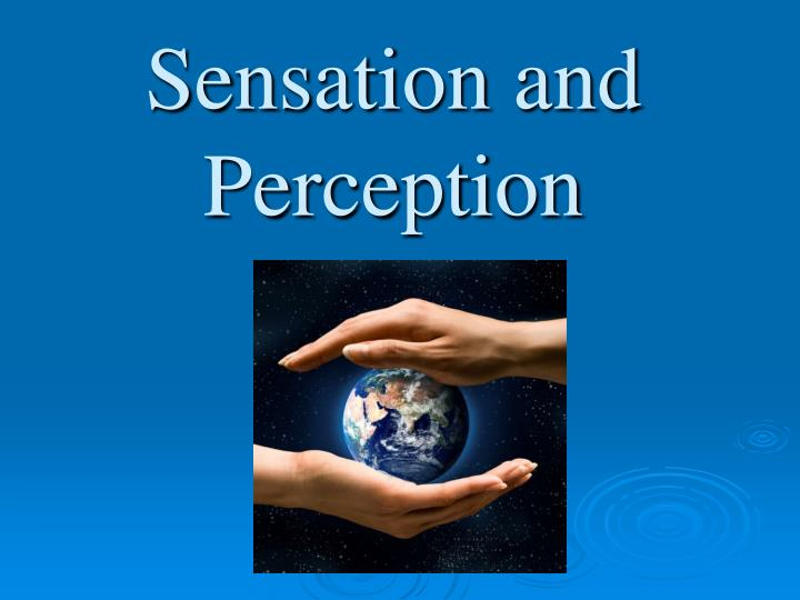 sensation and perception essay paper Sensation refers to the process of sensing our environment through touch, taste, sight, sound, and smell this information is sent to our brains in raw form where perception comes into play perception is the way we interpret these sensations and therefore make sense of everything around us.